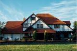 Nullzinspolitik fördert Kauf von Immobilien